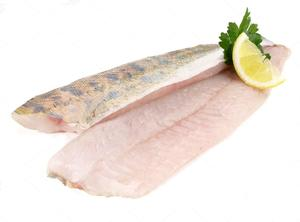stock-photo-sander-pikeperch-fish-fillet-1308227920.jpg